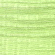 Pea Wallcovering by Scalamandre Wallpaper