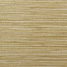 Madras Texture Wallcovering by Winfield Thybony