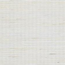 Sand Dollar Metallic Wallcovering by Winfield Thybony